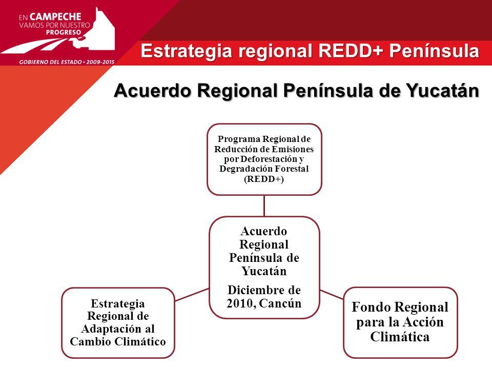 Estrategia regional REDD+ Península Estrategia regional REDD+ Península Consejo Técnico Consultivo (CTC) REDD+ de la Península de Yucatán – JUSTIFICACIÓN.
