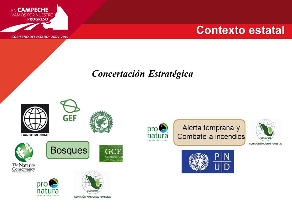 Creación /presencia de la CONAFOR 20012003 1994 2005 2006 Diagnóstico general de salud y manejo de plantaciones y reforestacion en Campeche en 3500 ha Creación de la reserva de Balam- kú 2008 Ley de Desarrollo Forestal Sustentable de Campeche 2009 2011 Revisión y adecuación de la Ley Des.