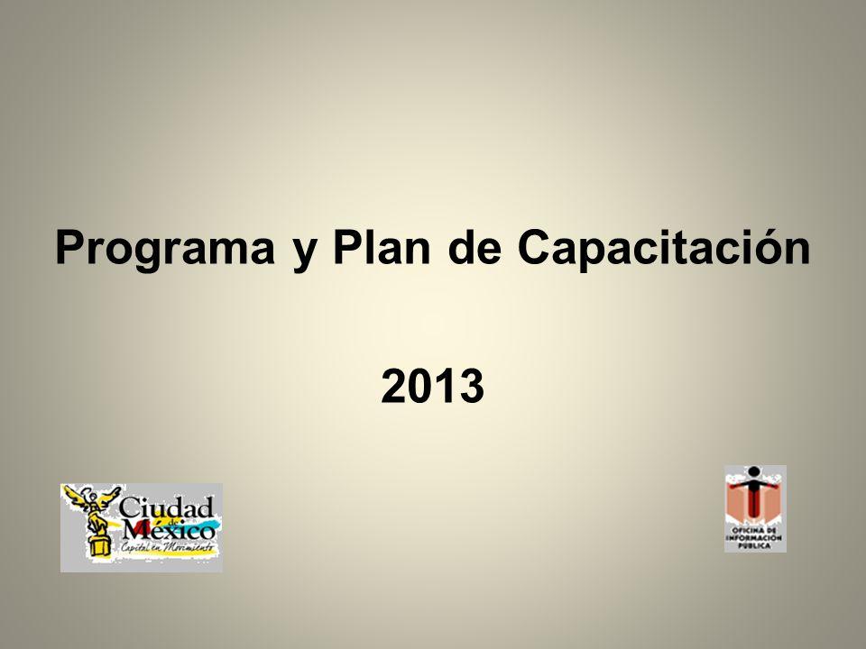 Programa y Plan de Capacitación 2013