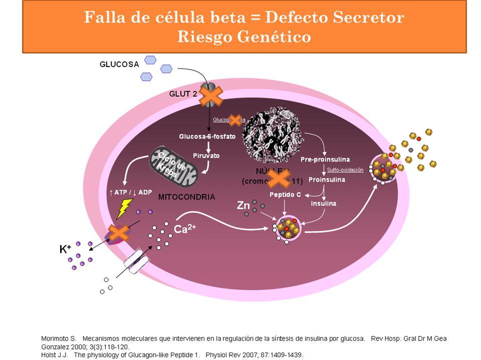 Falla de célula beta = Defecto Secretor Riesgo Genético