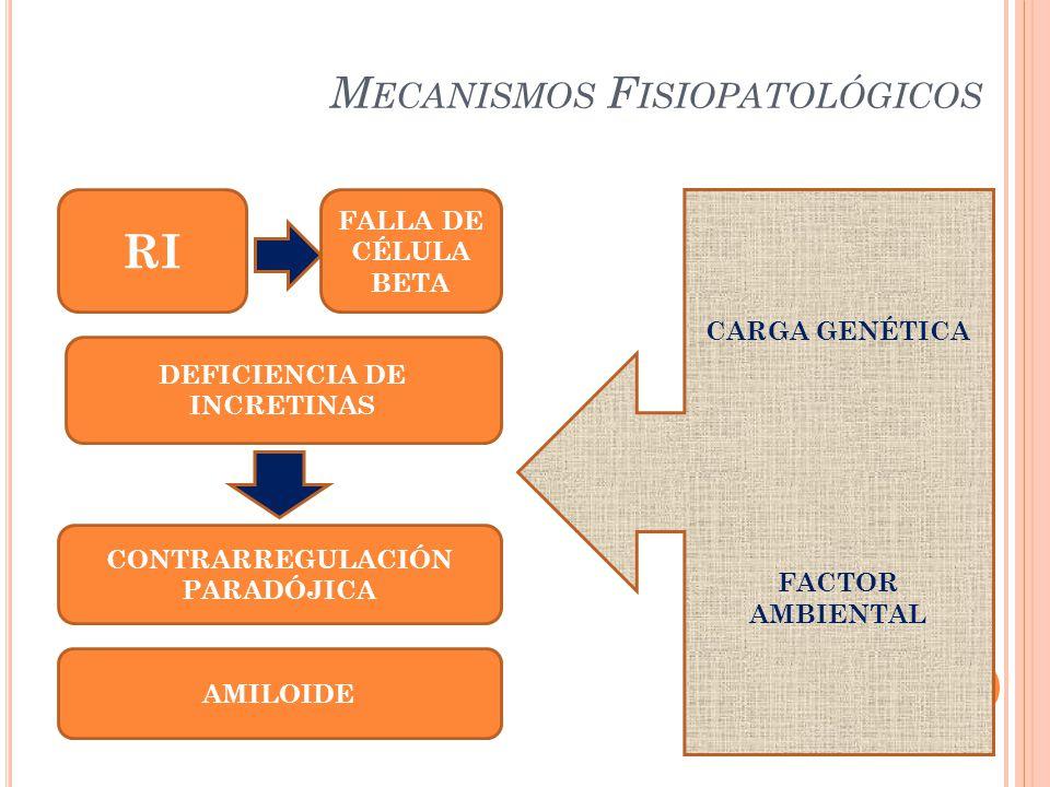 M ECANISMOS F ISIOPATOLÓGICOS RI FALLA DE CÉLULA BETA DEFICIENCIA DE INCRETINAS CONTRARREGULACIÓN PARADÓJICA CARGA GENÉTICA FACTOR AMBIENTAL AMILOIDE