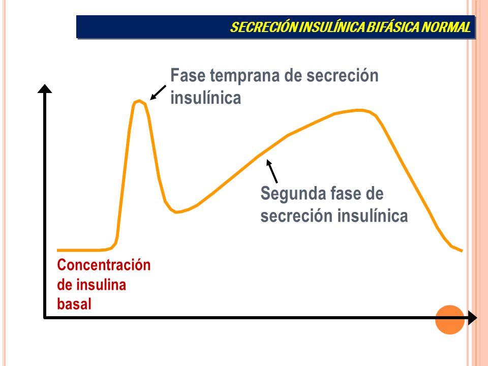 Secreción de insulina Concentración de insulina basal Fase temprana de secreción insulínica Segunda fase de secreción insulínica SECRECIÓN INSULÍNICA