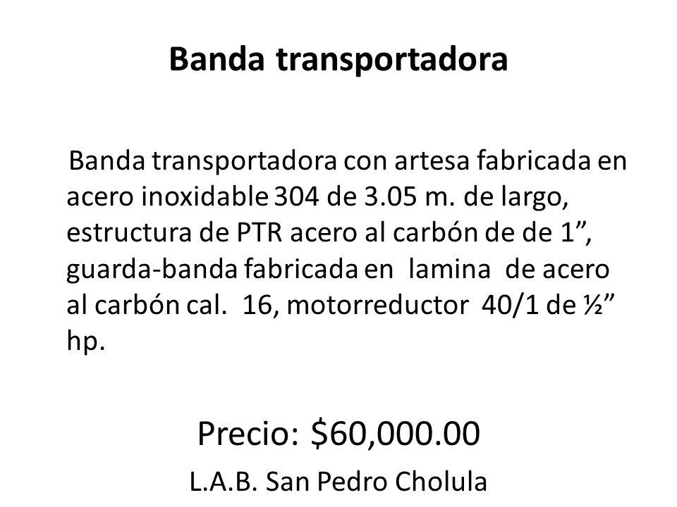 Banda transportadora Banda transportadora con artesa fabricada en acero inoxidable 304 de 3.05 m. de largo, estructura de PTR acero al carbón de de 1,