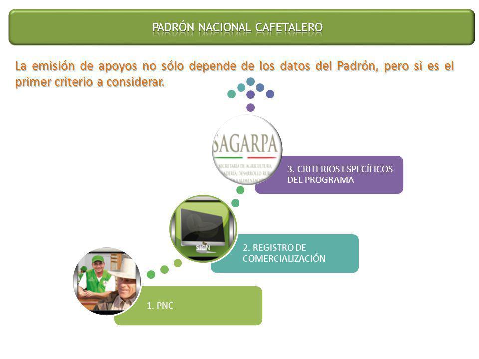 (jaqueline.diaz@amecafe.org.mx) Teléfonos (0155) 5688 4569 Ext.