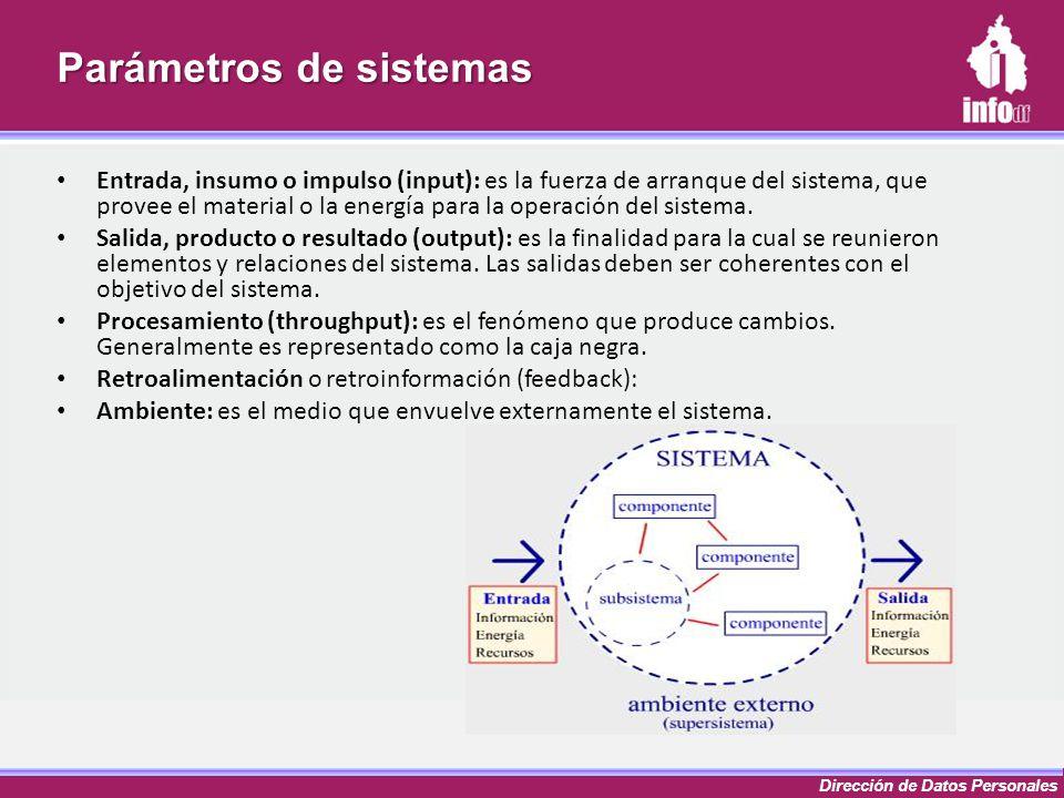 Dirección de Datos Personales Parámetros de sistemas Entrada, insumo o impulso (input): es la fuerza de arranque del sistema, que provee el material o