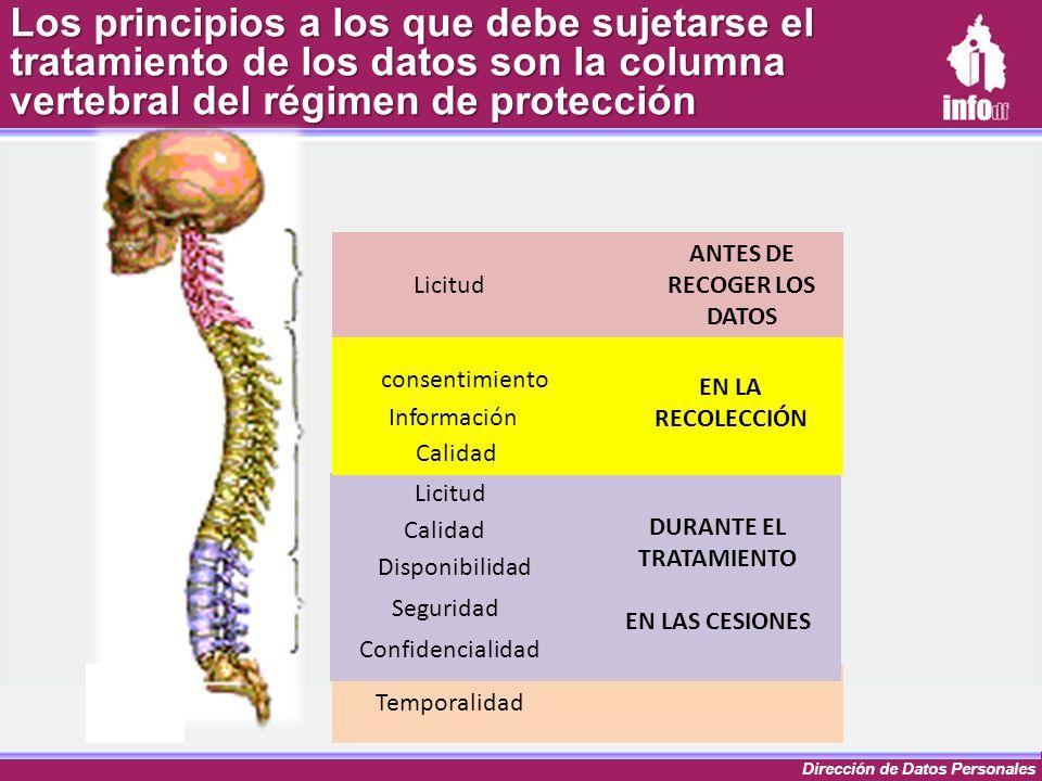 Dirección de Datos Personales Los principios a los que debe sujetarse el tratamiento de los datos son la columna vertebral del régimen de protección L