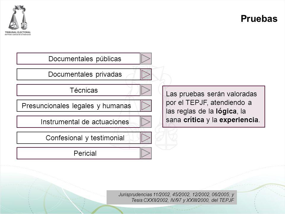 Documentales públicas Documentales privadas Técnicas Presuncionales legales y humanas Instrumental de actuaciones Confesional y testimonial Pericial P
