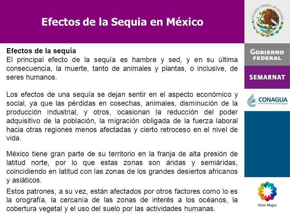 Efectos de la Sequia en México Efectos de la sequía El principal efecto de la sequía es hambre y sed, y en su última consecuencia, la muerte, tanto de