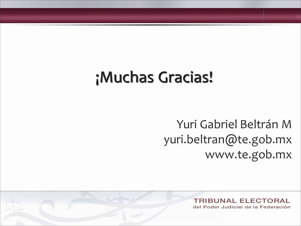 ¡Muchas Gracias! Yuri Gabriel Beltrán M yuri.beltran@te.gob.mx www.te.gob.mx