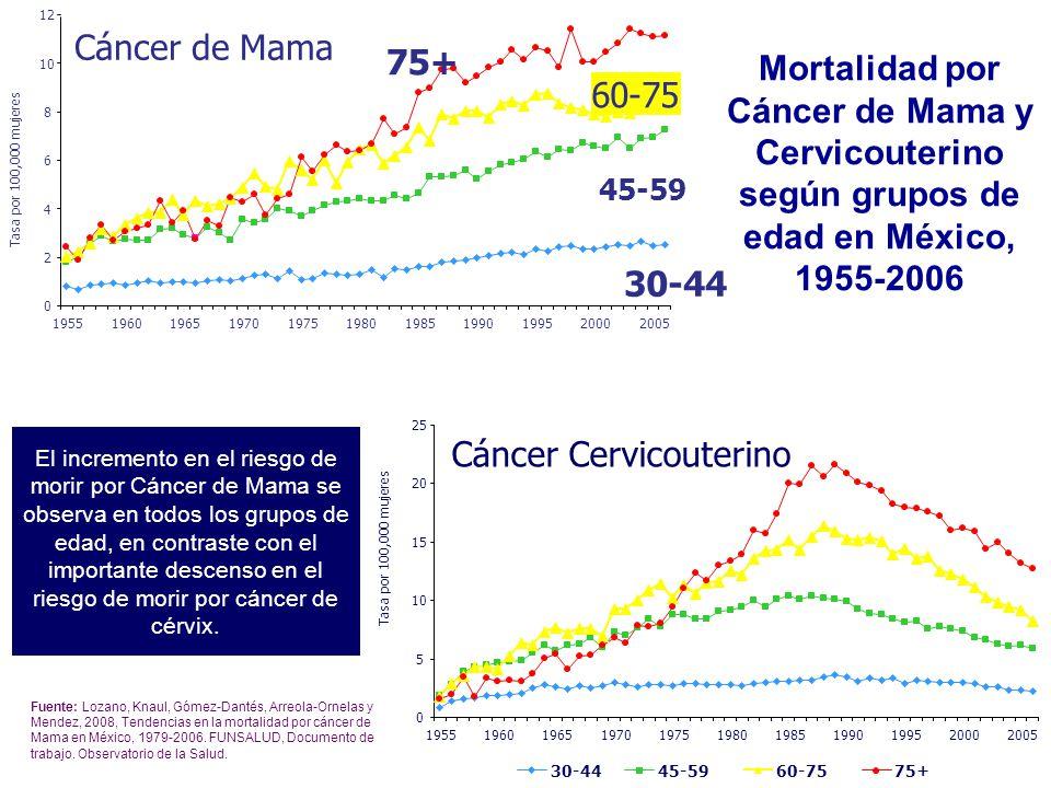 Mortalidad por Cáncer de Mama y Cervicouterino según grupos de edad en México, 1955-2006 El incremento en el riesgo de morir por Cáncer de Mama se observa en todos los grupos de edad, en contraste con el importante descenso en el riesgo de morir por cáncer de cérvix.