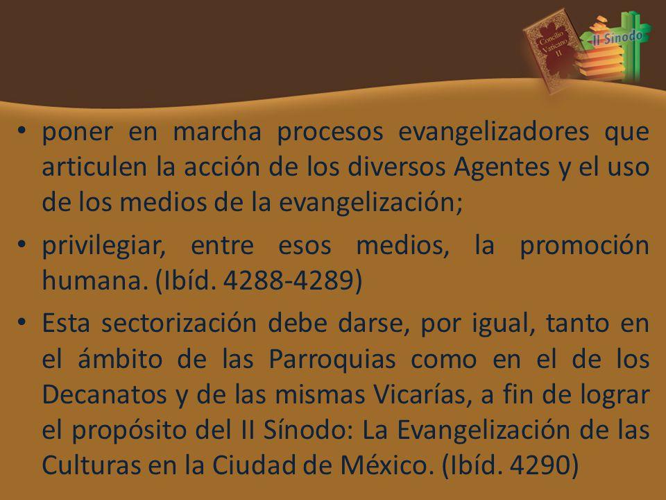 poner en marcha procesos evangelizadores que articulen la acción de los diversos Agentes y el uso de los medios de la evangelización; privilegiar, entre esos medios, la promoción humana.