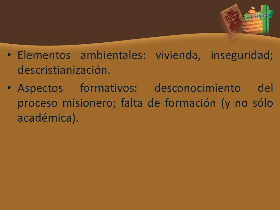 Elementos ambientales: vivienda, inseguridad; descristianización. Aspectos formativos: desconocimiento del proceso misionero; falta de formación (y no