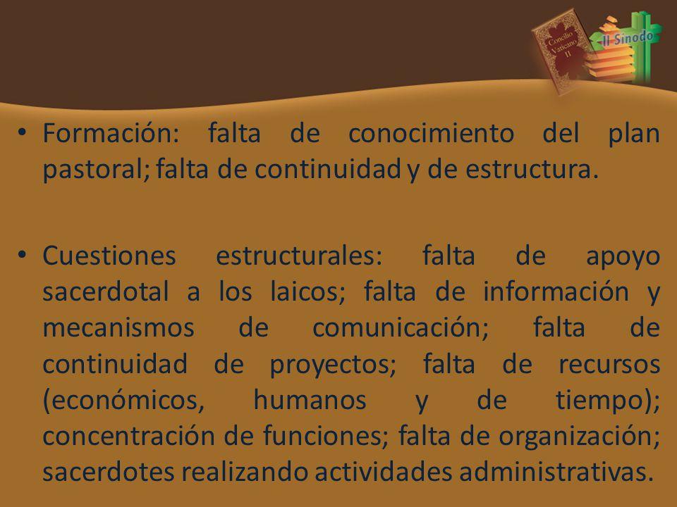 Formación: falta de conocimiento del plan pastoral; falta de continuidad y de estructura. Cuestiones estructurales: falta de apoyo sacerdotal a los la