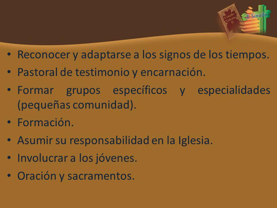 Reconocer y adaptarse a los signos de los tiempos. Pastoral de testimonio y encarnación. Formar grupos específicos y especialidades (pequeñas comunida