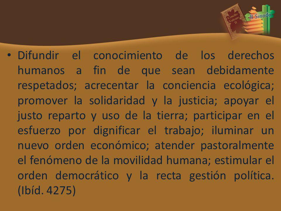 Difundir el conocimiento de los derechos humanos a fin de que sean debidamente respetados; acrecentar la conciencia ecológica; promover la solidaridad