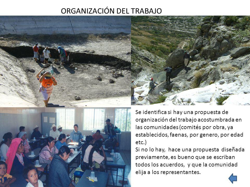 ORGANIZACIÓN DEL TRABAJO Se identifica si hay una propuesta de organización del trabajo acostumbrada en las comunidades (comités por obra, ya establec