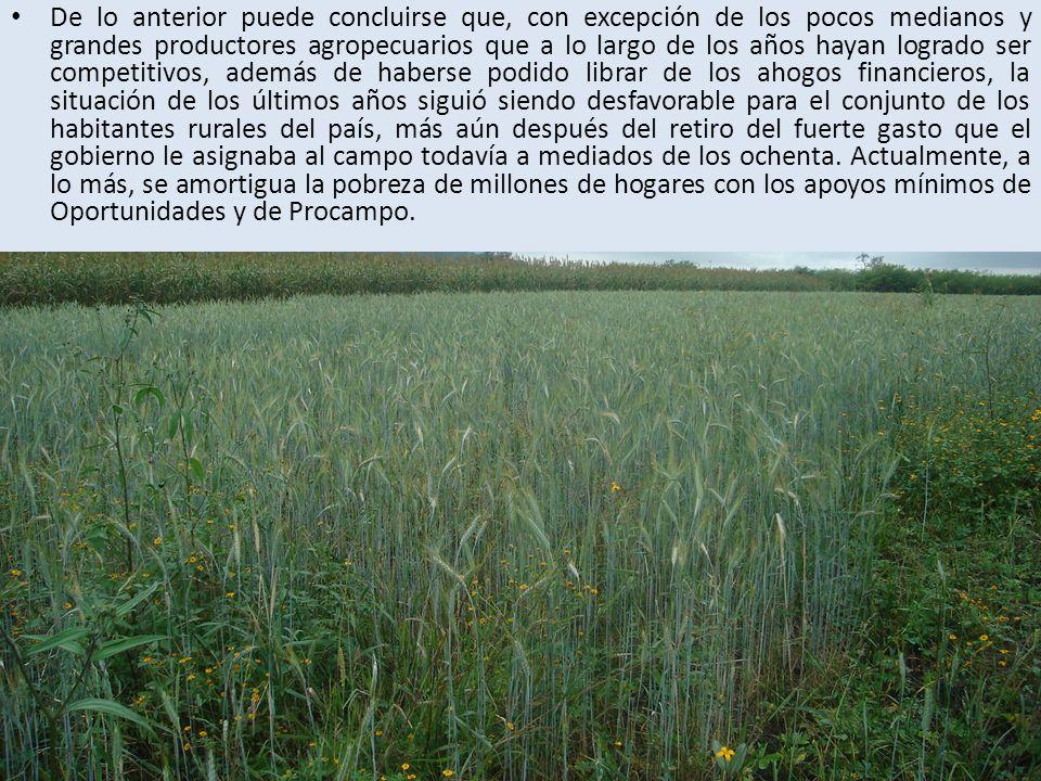 De lo anterior puede concluirse que, con excepción de los pocos medianos y grandes productores agropecuarios que a lo largo de los años hayan logrado