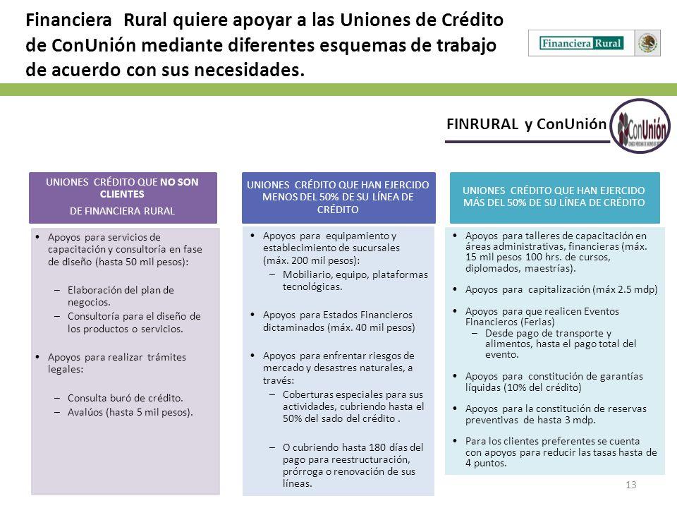 13 FINRURAL y ConUnión Financiera Rural quiere apoyar a las Uniones de Crédito de ConUnión mediante diferentes esquemas de trabajo de acuerdo con sus