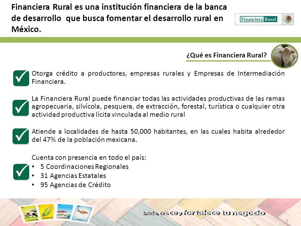 3 ¿Qué es Financiera Rural? Financiera Rural es una institución financiera de la banca de desarrollo que busca fomentar el desarrollo rural en México.