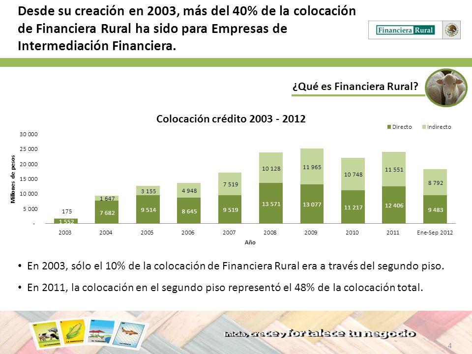 4 ¿Qué es Financiera Rural? Desde su creación en 2003, más del 40% de la colocación de Financiera Rural ha sido para Empresas de Intermediación Financ