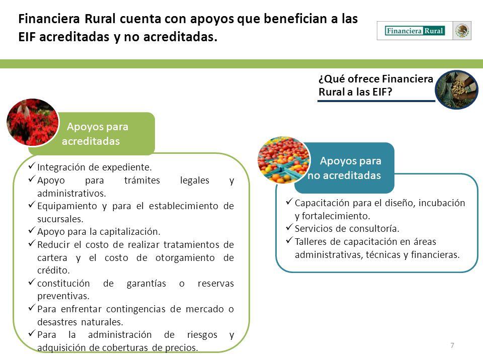 7 ¿Qué ofrece Financiera Rural a las EIF? Financiera Rural cuenta con apoyos que benefician a las EIF acreditadas y no acreditadas. Integración de exp