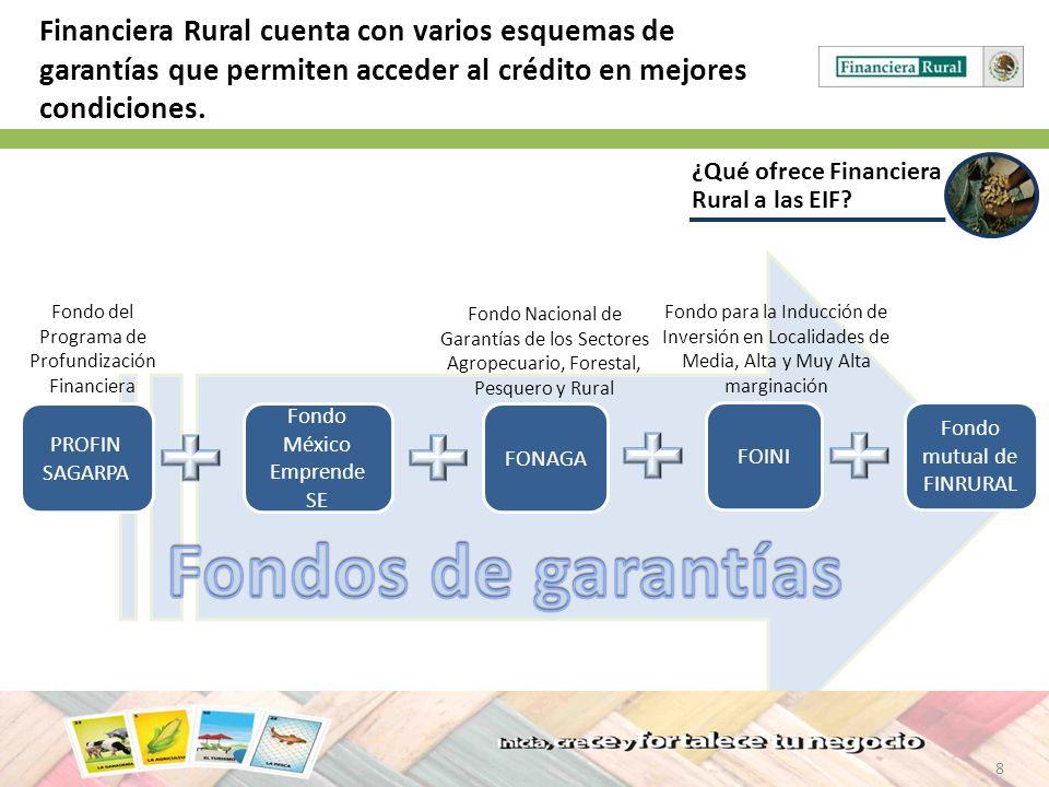 8 ¿Qué ofrece Financiera Rural a las EIF? Financiera Rural cuenta con varios esquemas de garantías que permiten acceder al crédito en mejores condicio