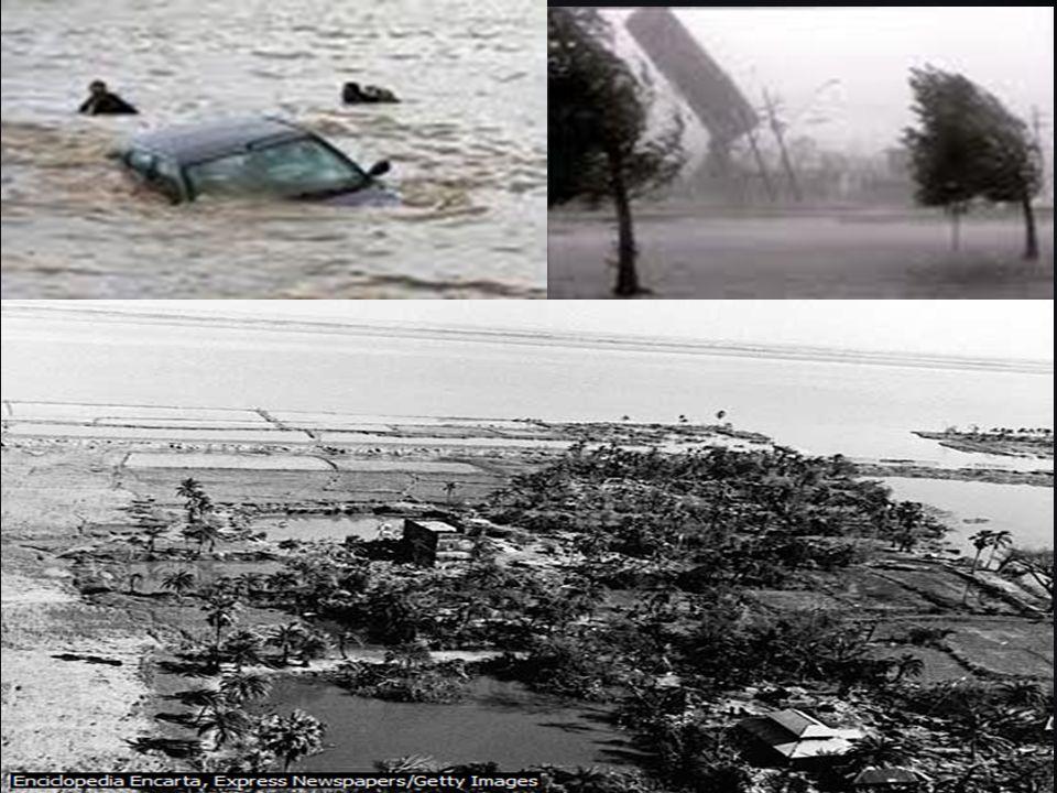 Desastre del petrolero Prestige (2002) Un voluntario llena un cubo con el fuel que cubre las rocas de una playa, en la localidad gallega de Musía.