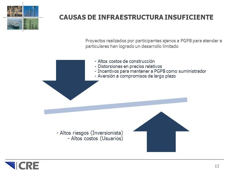 CAUSAS DE INFRAESTRUCTURA INSUFICIENTE 13 Proyectos realizados por participantes ajenos a PGPB para atender a particulares han logrado un desarrollo l