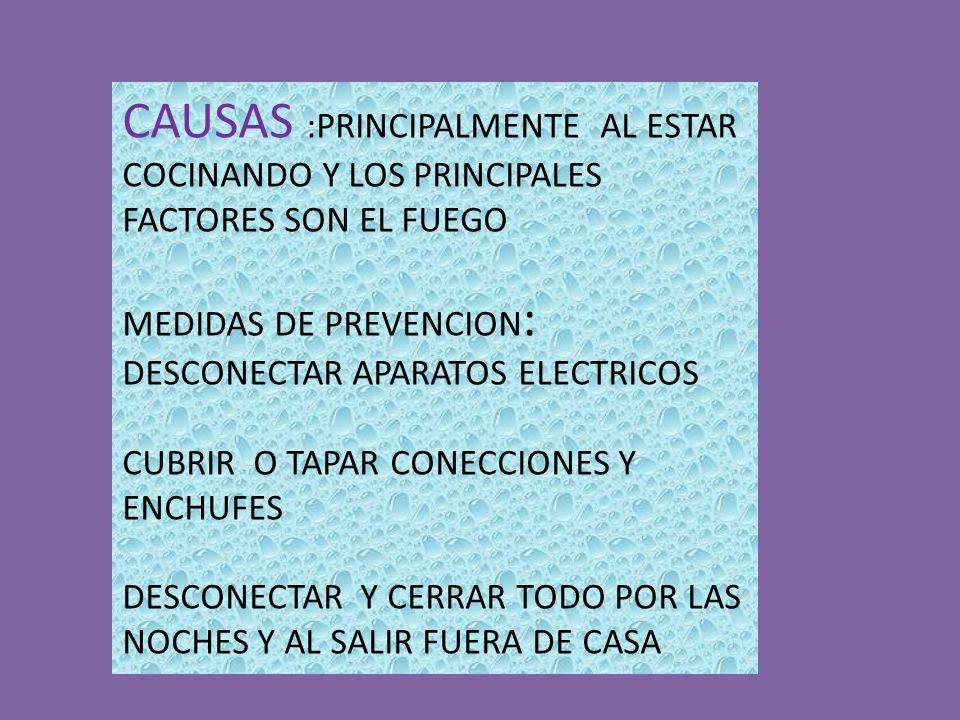 CAUSAS :PRINCIPALMENTE AL ESTAR COCINANDO Y LOS PRINCIPALES FACTORES SON EL FUEGO MEDIDAS DE PREVENCION : DESCONECTAR APARATOS ELECTRICOS CUBRIR O TAPAR CONECCIONES Y ENCHUFES DESCONECTAR Y CERRAR TODO POR LAS NOCHES Y AL SALIR FUERA DE CASA