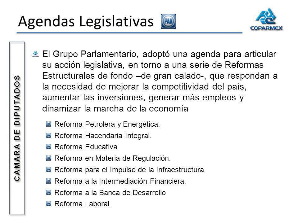 Agendas Legislativas El Grupo Parlamentario, adoptó una agenda para articular su acción legislativa, en torno a una serie de Reformas Estructurales de