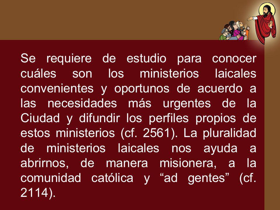 Se requiere de estudio para conocer cuáles son los ministerios laicales convenientes y oportunos de acuerdo a las necesidades más urgentes de la Ciuda