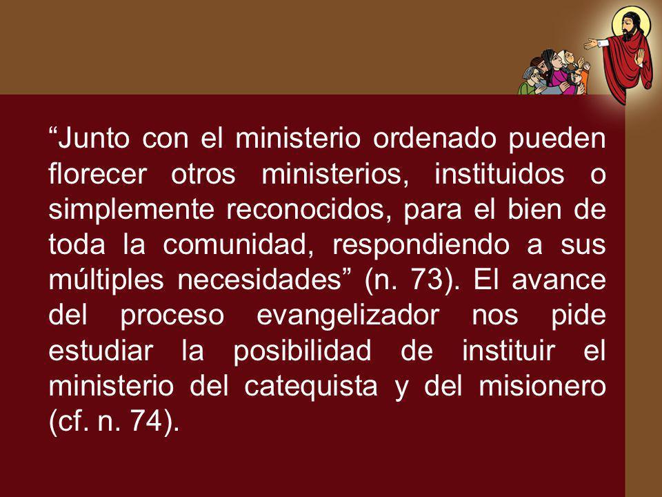 Junto con el ministerio ordenado pueden florecer otros ministerios, instituidos o simplemente reconocidos, para el bien de toda la comunidad, respondi