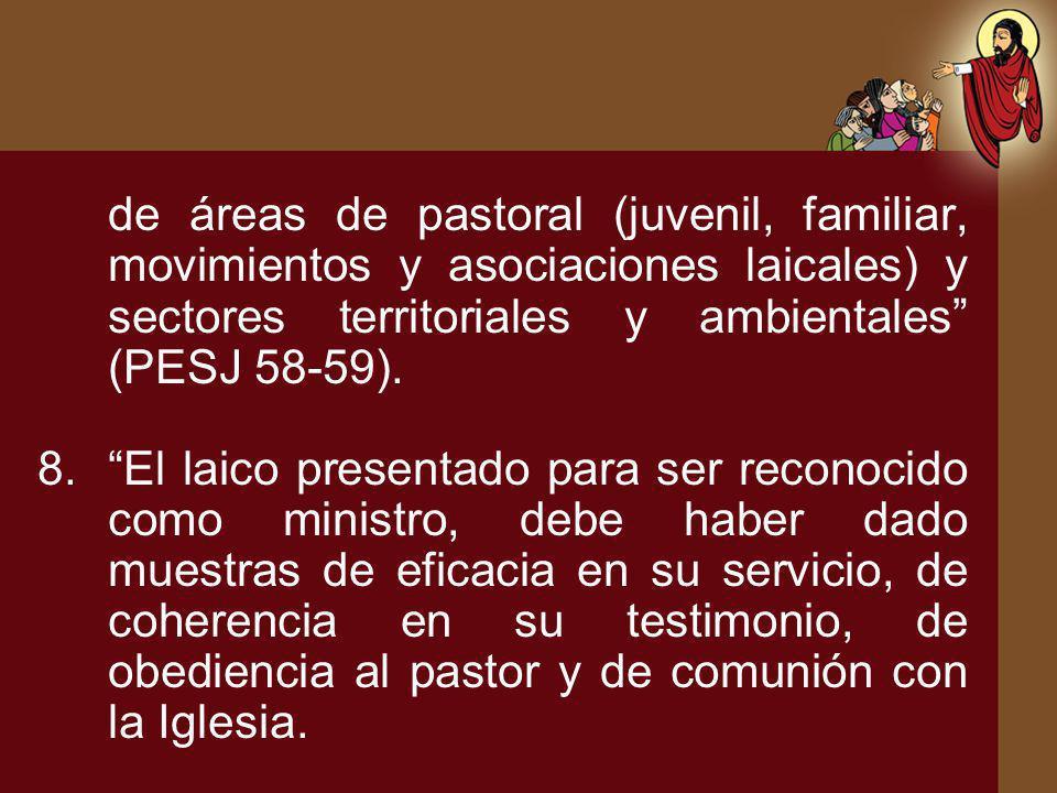 de áreas de pastoral (juvenil, familiar, movimientos y asociaciones laicales) y sectores territoriales y ambientales (PESJ 58-59). 8.El laico presenta