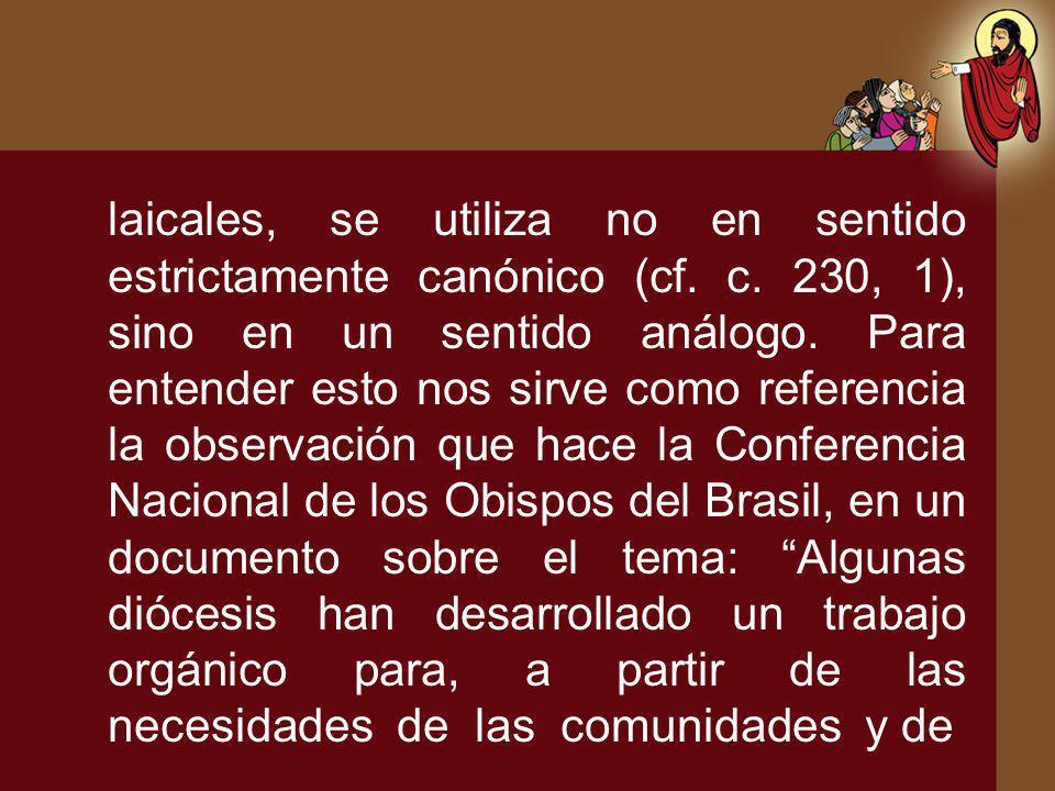 laicales, se utiliza no en sentido estrictamente canónico (cf. c. 230, 1), sino en un sentido análogo. Para entender esto nos sirve como referencia la