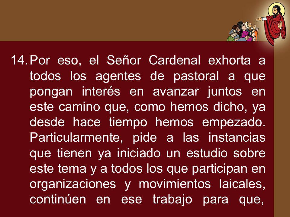 14.Por eso, el Señor Cardenal exhorta a todos los agentes de pastoral a que pongan interés en avanzar juntos en este camino que, como hemos dicho, ya