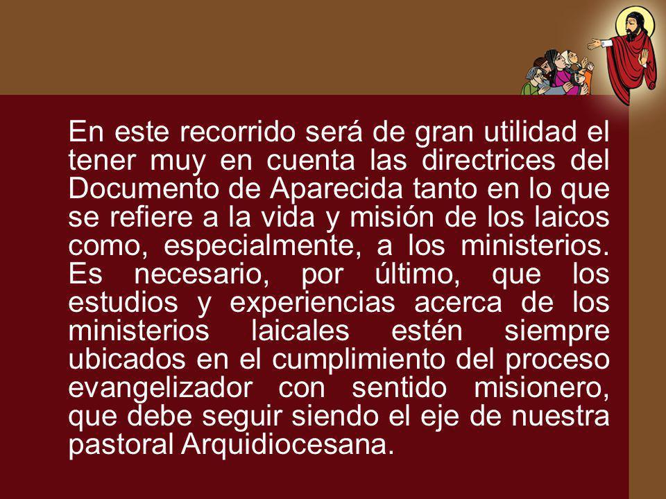 En este recorrido será de gran utilidad el tener muy en cuenta las directrices del Documento de Aparecida tanto en lo que se refiere a la vida y misió