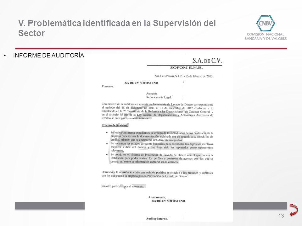 13 V. Problemática identificada en la Supervisión del Sector INFORME DE AUDITORÍA