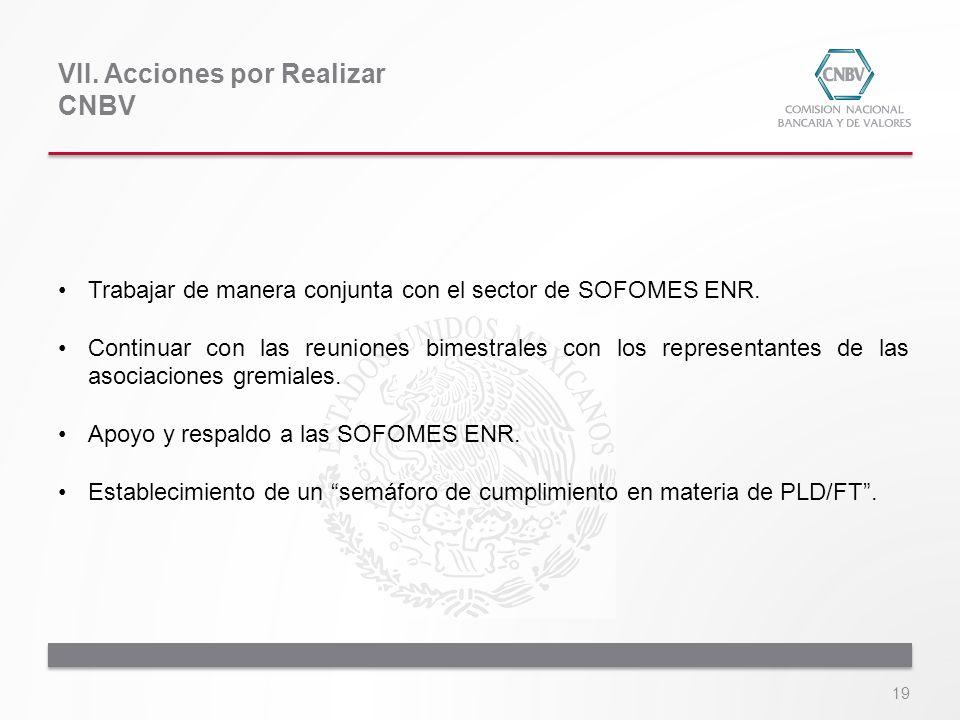 VII. Acciones por Realizar CNBV 19 Trabajar de manera conjunta con el sector de SOFOMES ENR. Continuar con las reuniones bimestrales con los represent