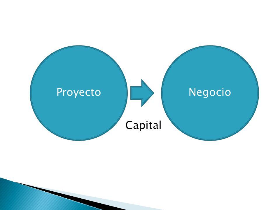 Proyecto Capital Negocio Opciones: a)Buscar quién tenga y lo quiera prestar b)Especialistas en préstamos e inversiones