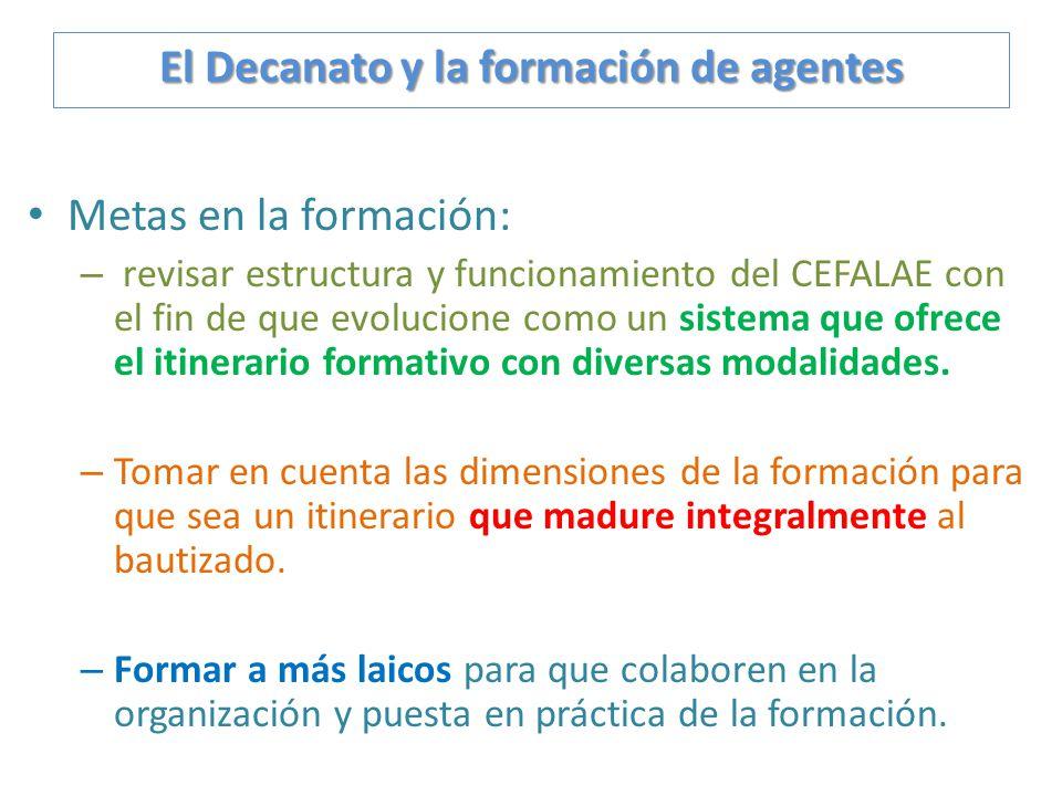 Metas en la formación: – revisar estructura y funcionamiento del CEFALAE con el fin de que evolucione como un sistema que ofrece el itinerario formati