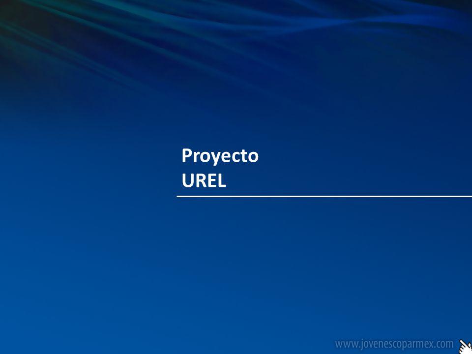Para lograr nuestros objetivos a hemos definido el Proyecto UREL que esta conformado en sus cuatro pilares fundamentales que son Unidad + Representatividad + Emprendedurismo + Liderazgo.