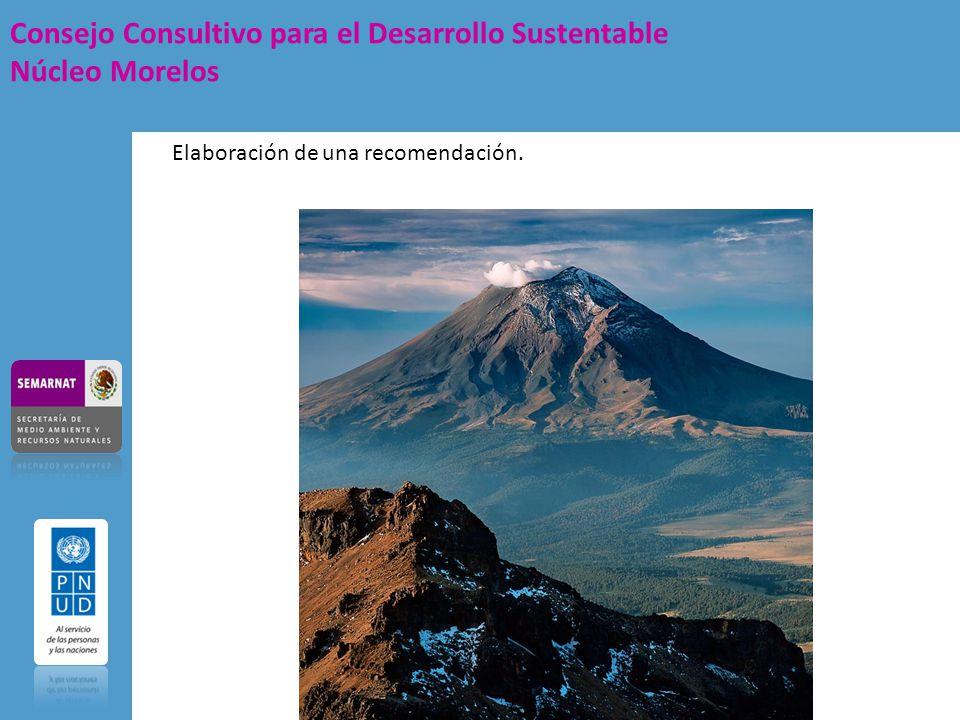 Consejo Consultivo para el Desarrollo Sustentable Núcleo Morelos Elaboración de una recomendación.