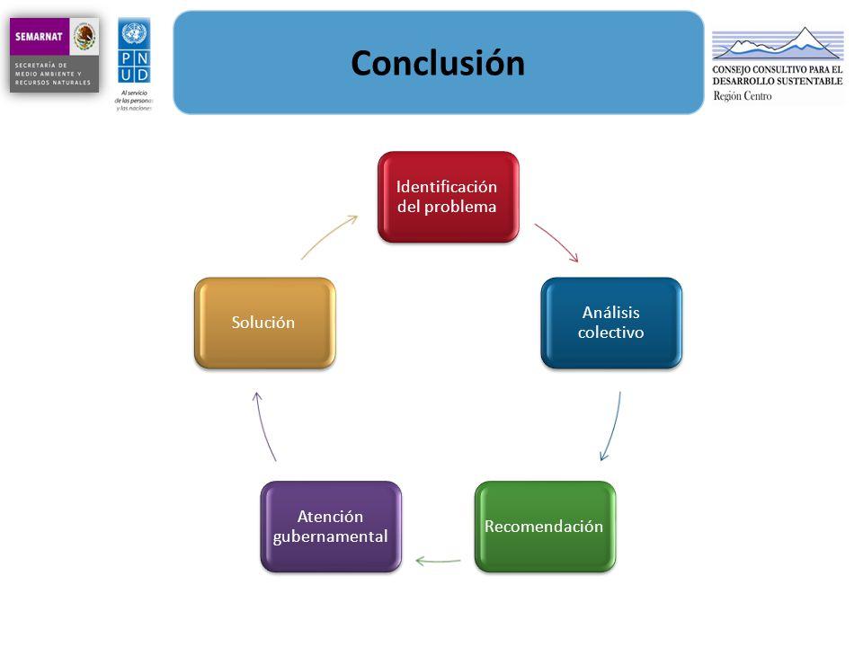 Conclusión Identificación del problema Análisis colectivo Recomendación Atención gubernamental Solución