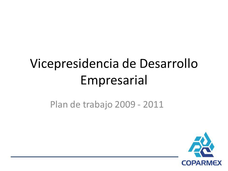 Vicepresidencia de Desarrollo Empresarial Plan de trabajo 2009 - 2011