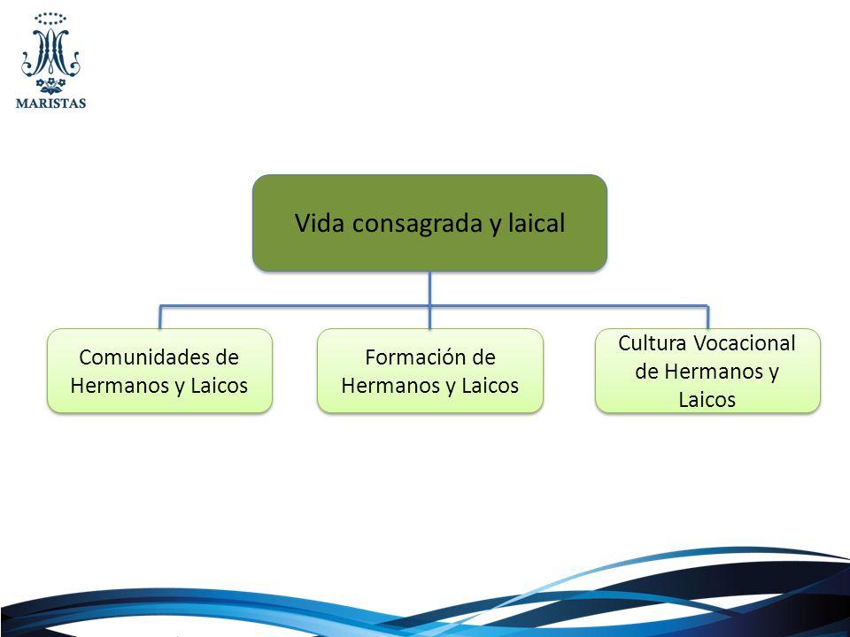 Vida consagrada y laical Comunidades de Hermanos y Laicos Formación de Hermanos y Laicos Cultura Vocacional de Hermanos y Laicos