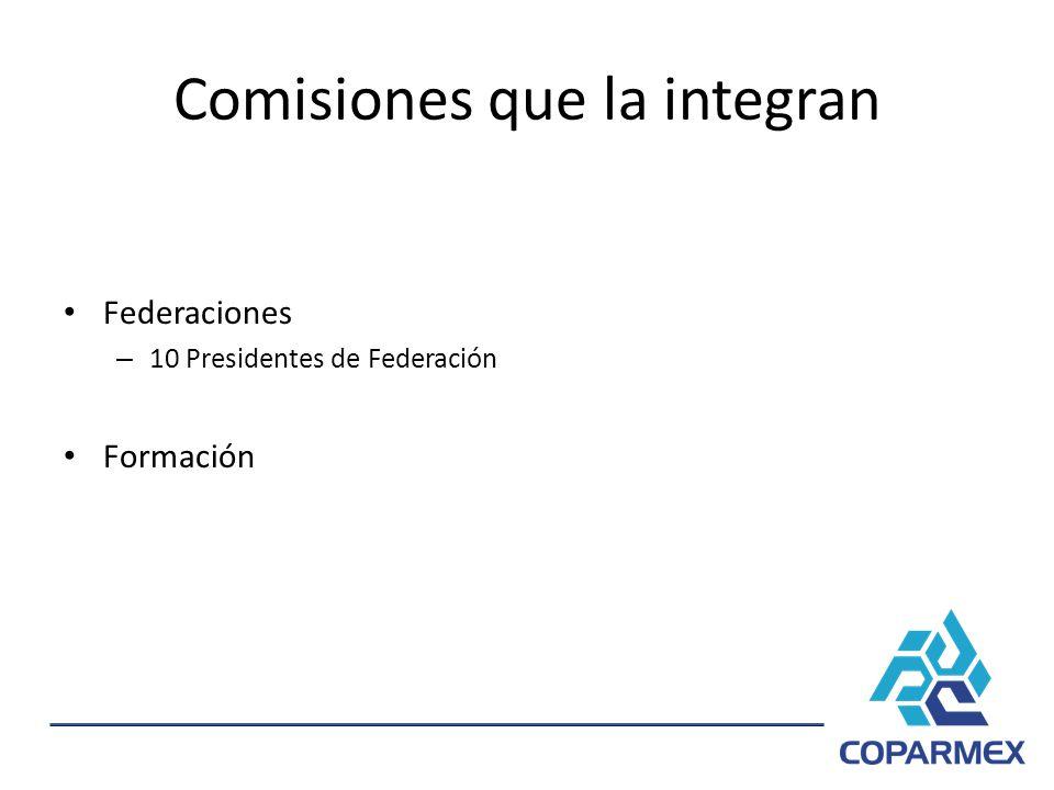 Comisiones que la integran Federaciones – 10 Presidentes de Federación Formación