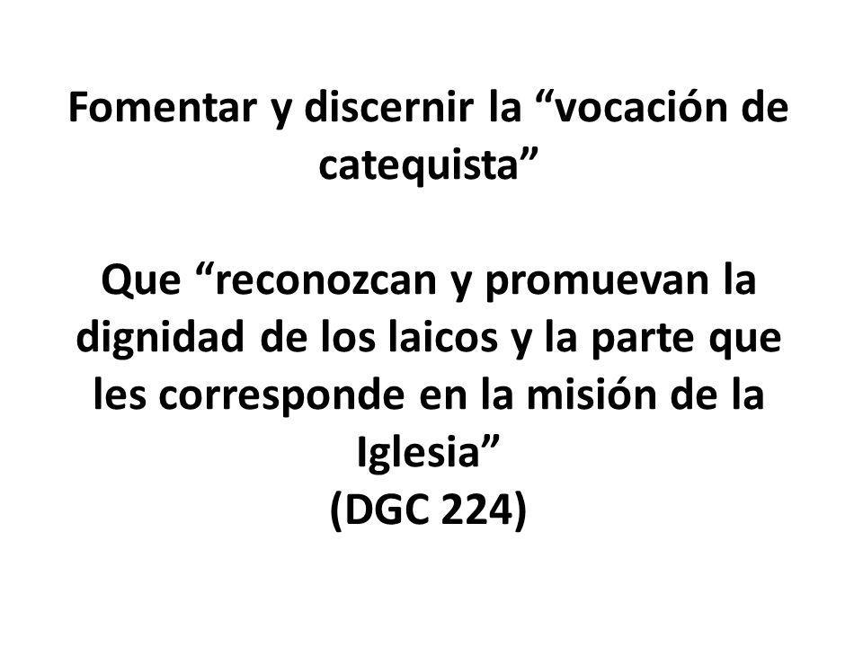 Fomentar y discernir la vocación de catequista Que reconozcan y promuevan la dignidad de los laicos y la parte que les corresponde en la misión de la