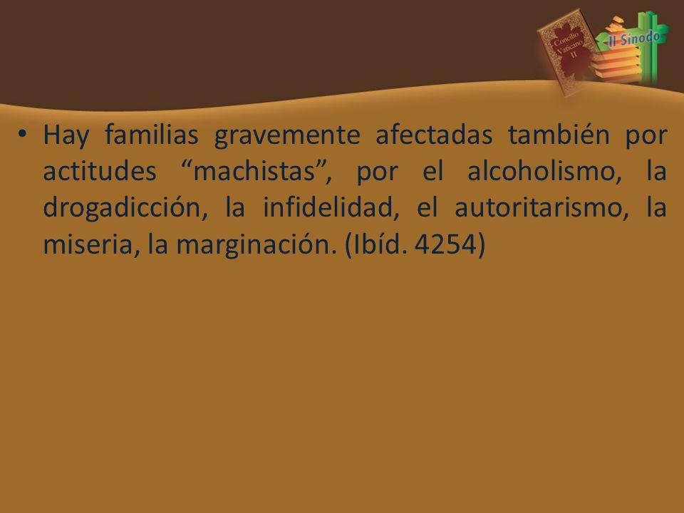 Hay familias gravemente afectadas también por actitudes machistas, por el alcoholismo, la drogadicción, la infidelidad, el autoritarismo, la miseria,