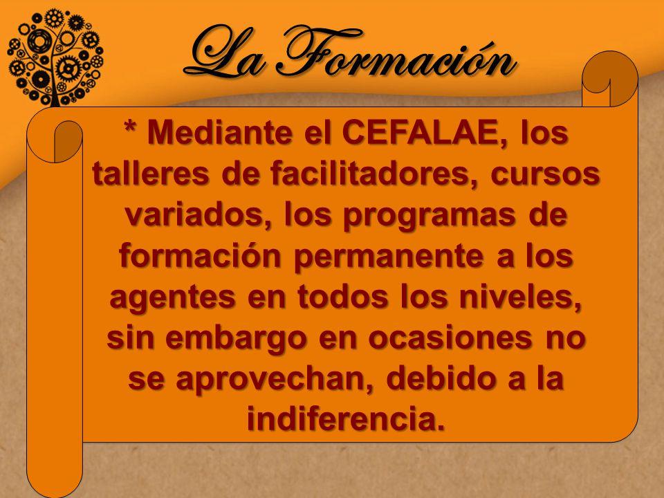 La Formación * Mediante el CEFALAE, los talleres de facilitadores, cursos variados, los programas de formación permanente a los agentes en todos los niveles, sin embargo en ocasiones no se aprovechan, debido a la indiferencia.