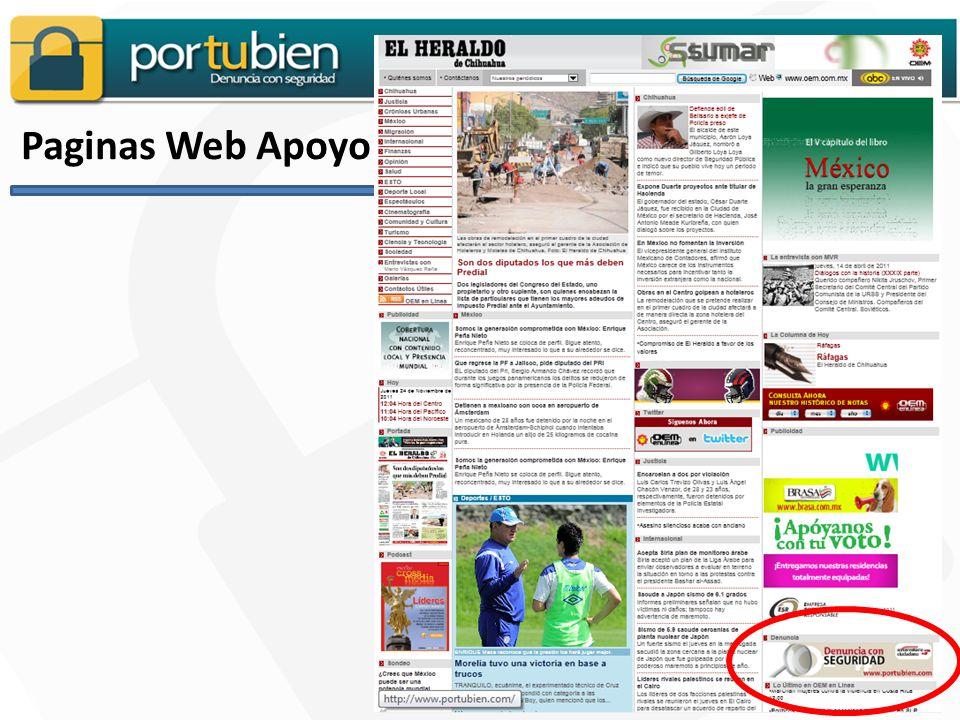 Paginas Web Apoyo